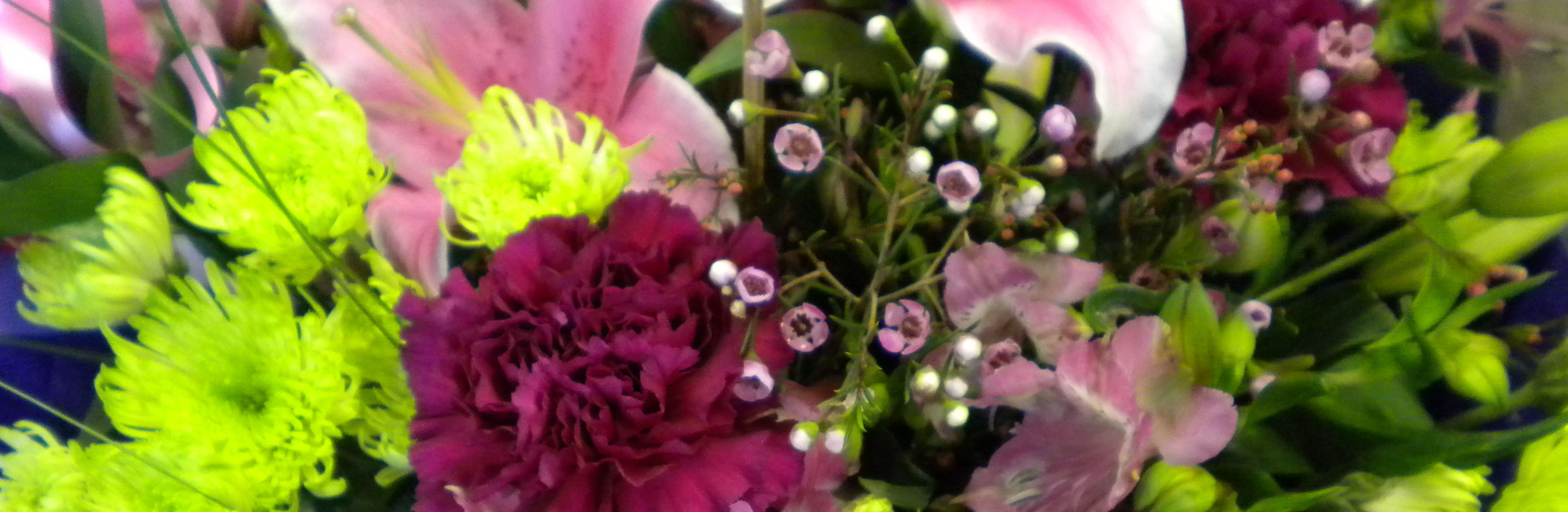 Wel e to House of Flowers Barnoldswick